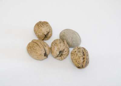 4 nuts 1 stone Art